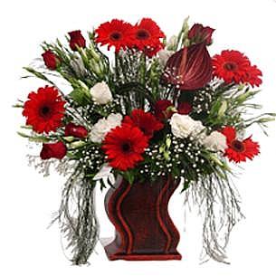 Gerberalardan ve Mevsim Çiçekleri