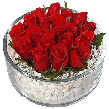 Cam Ýçerisinde Güller